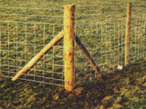 Stake & Post Commercial Fence